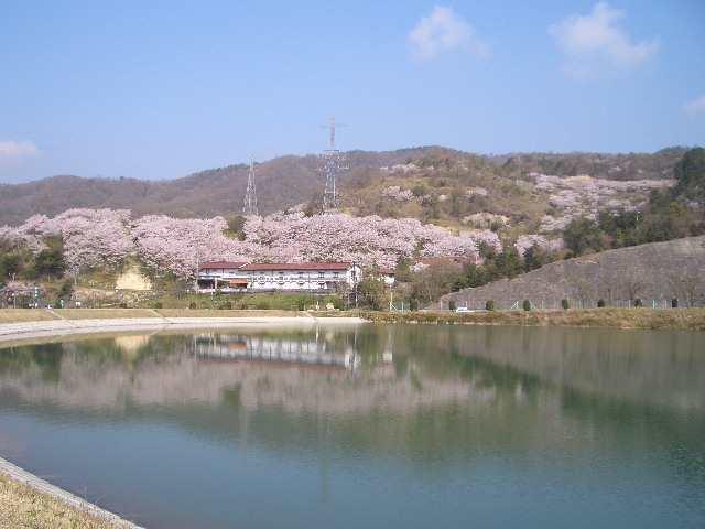 山麓窯の四季の景色